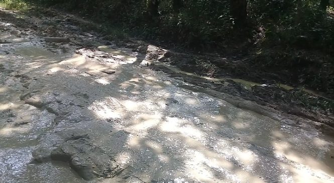 Miris…Beginilah Bentuk Jalan Penghubung Desa di Labusel