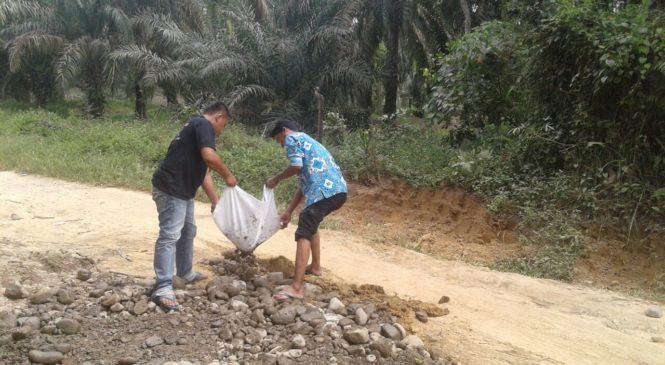 Kompak, Warga dan Pemerintah Desa Bahu-Membahu Perbaiki Jalan di Ujung Gading