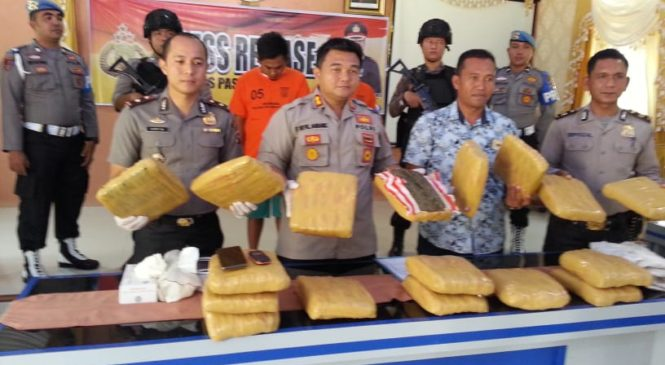 Pemasok Ganja Di Tiga Kabupaten Di Sumbar, Ditangkap Polres Pasbar