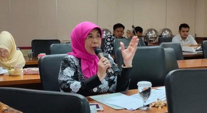 Raker Dengan Kemen BUMN, Hj. Emma Yohanna : Jadikan Bekas Tambang Sebagai Obyek Wisata Di Sawahlunto
