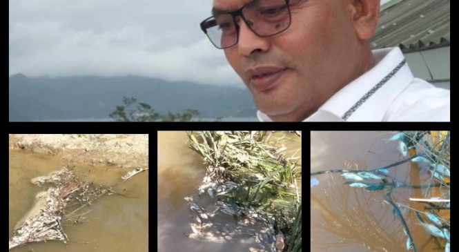 Terkait Ikan Mati Di Sepadan PT. GSA Dan PT. BTN, Syamsul Bahri : DLH Pasbar Harus Tegas Dalam Pengawasan