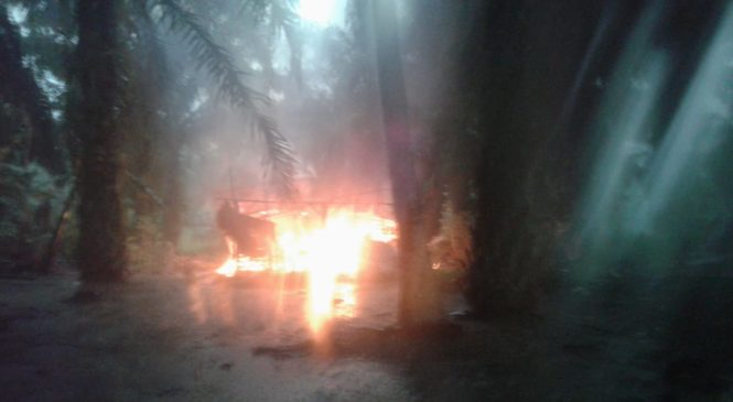 Disambar Petir, Rumah Nurlasmi Dewi Ludes Terbakar Di Pasbar