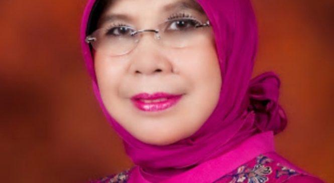 Komite II DPD RI Angkat Bicara Terkait Akses Jalan Dan Jembatan Ke Jorong Sikilang
